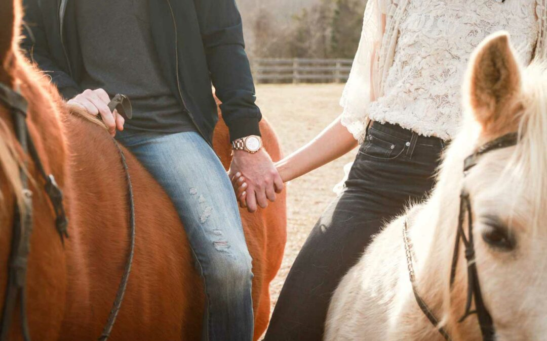 Equine Interactions in Therapy